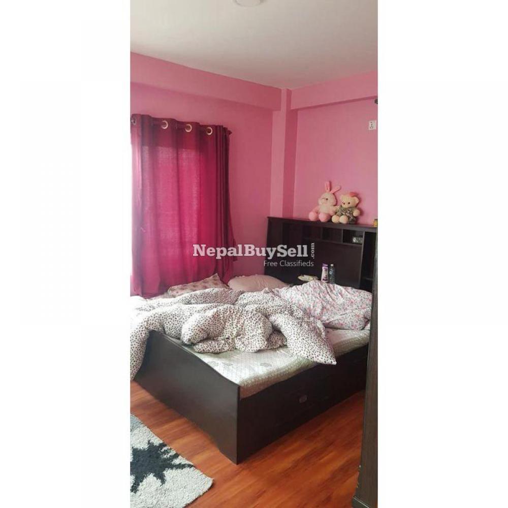 Organised bunglow flat on rent - 1/10