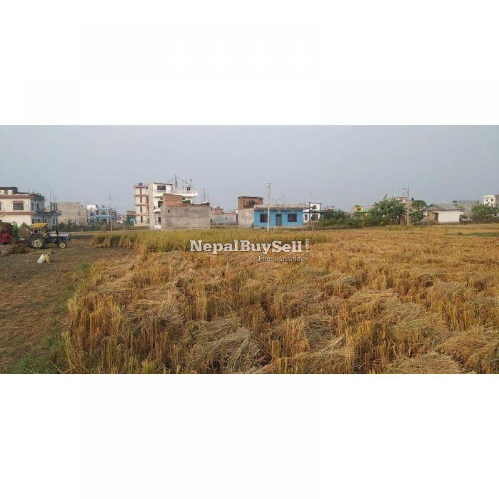 Land on Sale at Itahari - 2/2