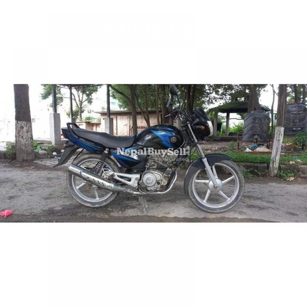 Yamaha Alba 38 Lot - 1/4