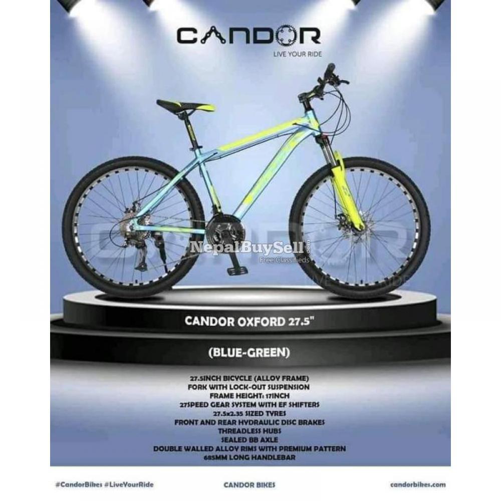 CANDOR (OXFORD) Mountain Bike - 7/8