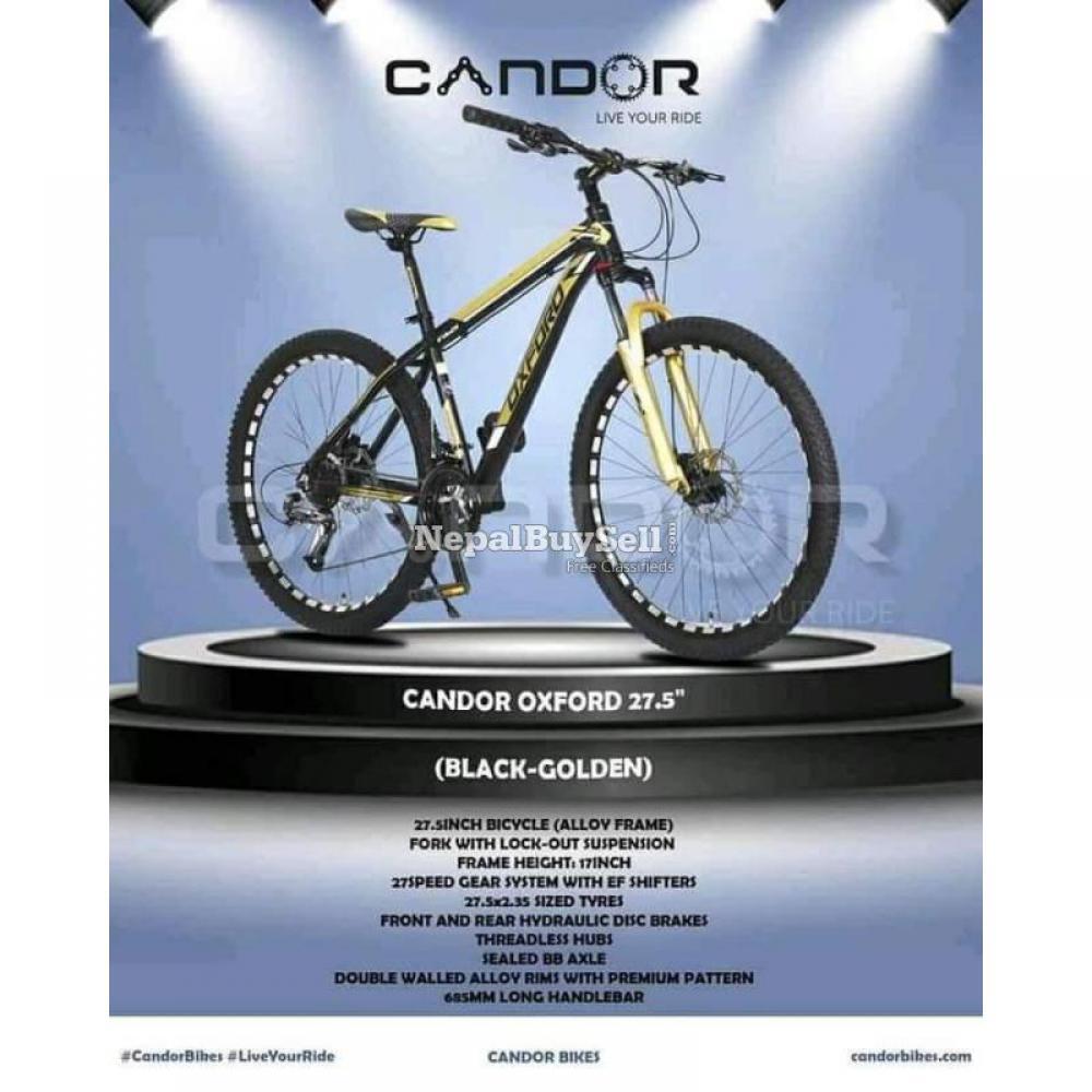 CANDOR (OXFORD) Mountain Bike - 8/8