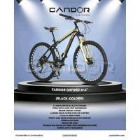 CANDOR (OXFORD) Mountain Bike - Image 8/8