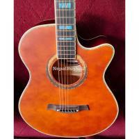 Swift horse Guitar