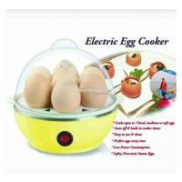 Electric Egg Poacher