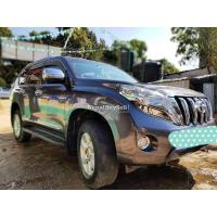 Car Full dent & paint